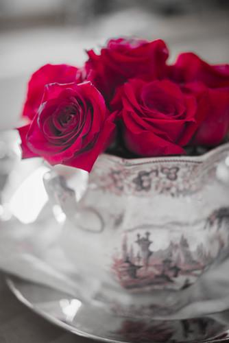 Rote Rosen in Porzellanvase mit grau-rosa Landschaftsmotiv