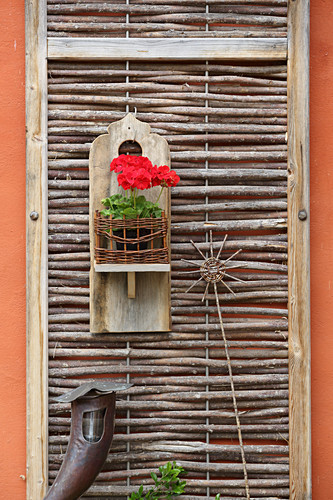 Red geranium in wall-mounted holder made from wood and wicker