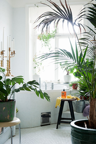 House plants in bathroom with corner bathtub and mosaic tiles
