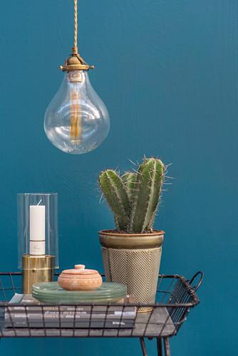 Kaktus und Deko-Accessoires in einem Metallkorb vor blauer Wand