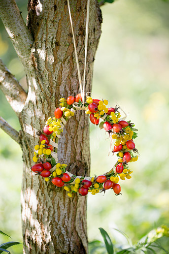 Wreath of rose hips and yellow flowers hung on tree
