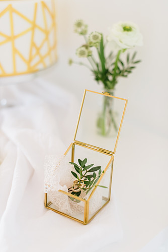 Wedding rings, sprig of leaves and lace doily in geometric glass box