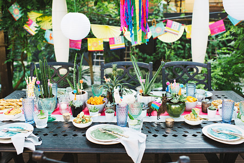 Potted succulents on table set in bright colours for Mexican party