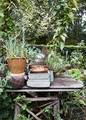 Old wooden planting table in mature, natural-style garden