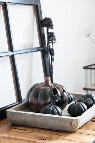 Arrangement of black pumpkins for Halloween