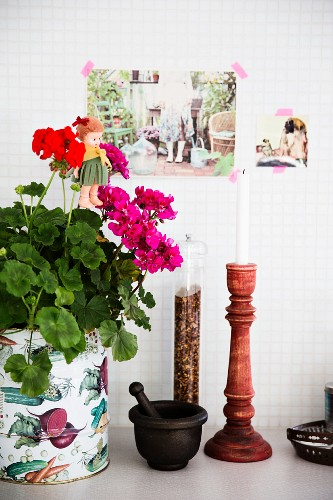 Potted geraniums, mortar and pestle, pepper mill and candlestick