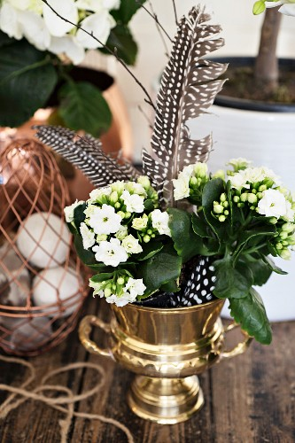 White Kalanchoe and spotted feathers in metal urn