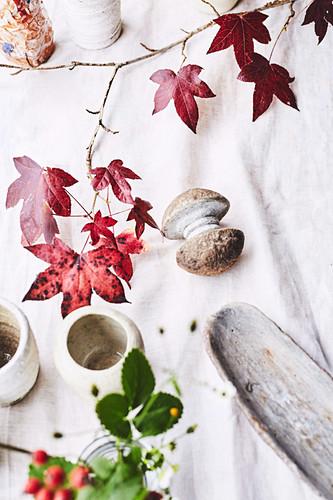 Herbstlich gefärbte Blätter vom Amberbaum als Dekoration