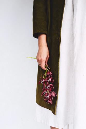 Frauenhände halten Orchideenzweig mit dunkelroten Blüten