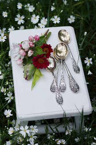 Apple blossom, red flowers and parrot tulips next to silver spoons