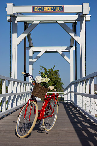 Rotes Fahrrad auf Brücke, Hortensie im Fahrradkorb