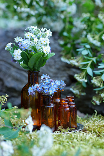 Blue and white forget-me-nots in brown glass bottles
