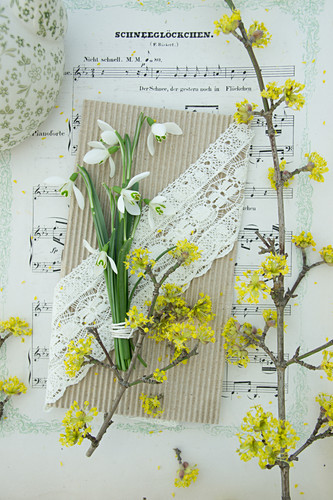Snowdrops on handmade greetings card with lace ribbon and twig of cornelian cherry on sheet music