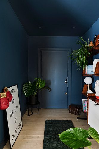 Foyer with dark blue walls, ceiling and front door