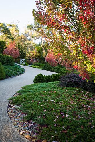 Paved path in autumn garden