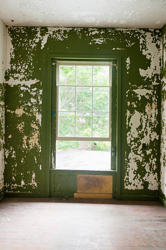 Peeling green wall paint in derelict room