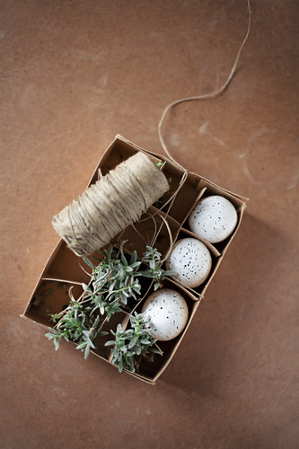 Speckled eggs, chickweed and twin in egg box