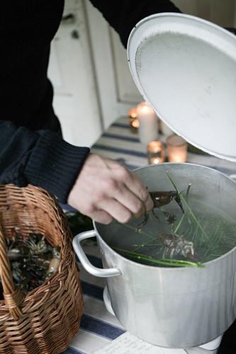 Putting crayfish in pot to boil