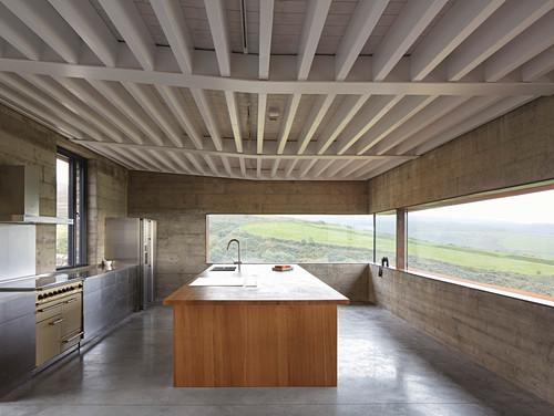 Minimalist kitchen in modern, concrete, architect-designed house