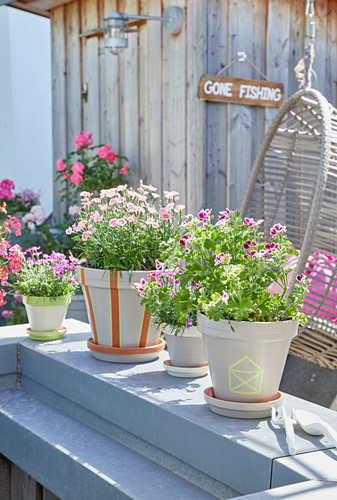 Summer flowers in hand-painted pots
