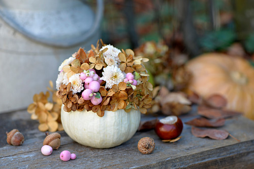 Ornamental gourd used as vase for chrysanthemums, snowberries and dried hydrangea florets
