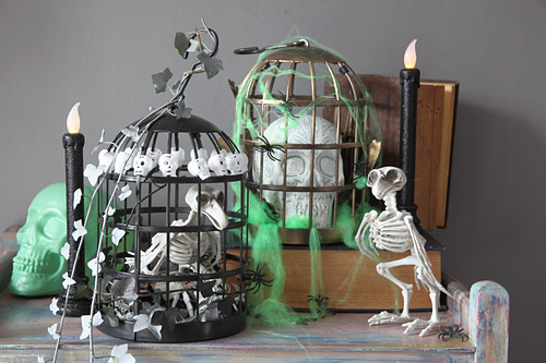 DIY Halloween decorations: bird skeleton in cage and skull in cage