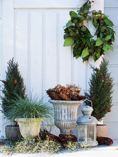Ivy wreath, potted conifers and lantern