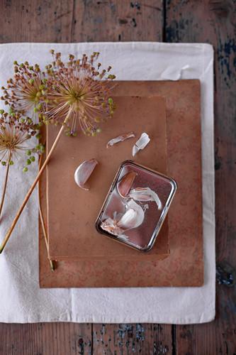 Dried garlic flowers on cardboard box and garlic cloves in tin