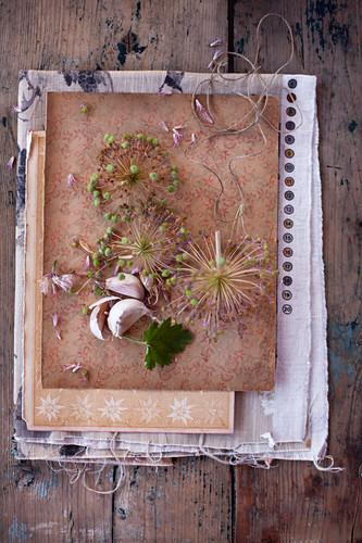 Vintage-style arrangement with garlic cloves and garlic flowers