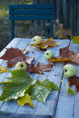 Autumn leaves and green apples on garden table