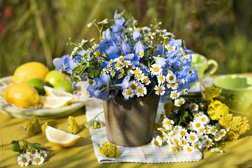 Vase of delphinium, yarrow and feverfew out of doors