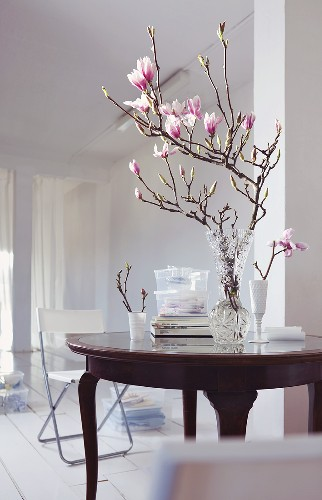 A magnolia sprig in a glass vase on an antique table in a white room
