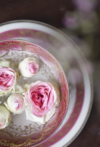 White roses in a bowl