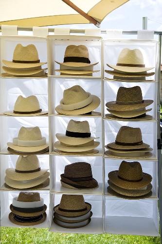 Men's hats on a white fabric shelf