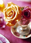 Yellow and red rose in a glass as table decoration