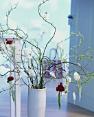 Ranunculuses and white tulips in hanging vases on Easter tree