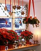 Window decoration with poinsettias