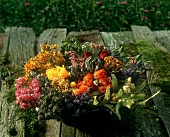 Arrangement of dried herbs and flowers