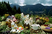 Still life with herbs & natural cosmetics in mountain pasture