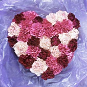 Heart shape in red and white carnations