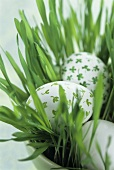 Painted eggs in Easter grass