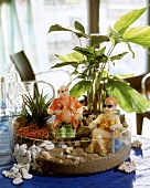 Miniature garden with coral bead plant & fish-tail palm