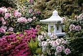 Small Asian pagoda surrounded by azaleas and rhododendrons