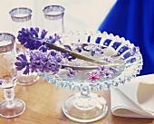 Fragrant hyacinths in a glass bowl