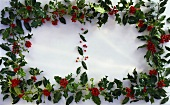 Holly with red berries as decoration