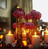 Dahlias on a table with burning candles