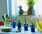 Four blue glasses with small bottle palms as table decoration