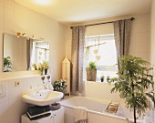 Mimosa and other foliage plants in a bathroom