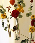 Mobile in close-up, dahlias and zinnias in glass tubes
