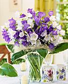 White and purple Campanulas